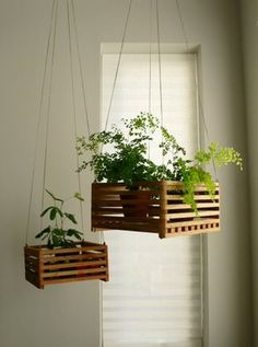 diy hanging planter. Wonder about using a clementine box. Not sure how long that would stand up to water