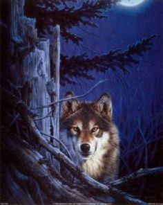 NA0102~Lone-Wolf-Posters