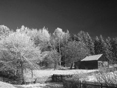 The First Frost : Observations on a winters morn.a Poem by Johnnydod - News - Bubblews
