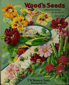 TW Wood & Sons - Wood's garden & farm guide : high grade seeds for 1914