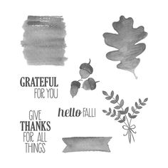 For All Things Clear-mount Stamp Set - by Stampin' Up!, handmade thanksgiving card, orange and red, pumpkin, DIY, paper crafting, *Stampin' Up, by Amy Frillici, Gathering Inkspiration Stamp Studio, order products online at amysuzanne.stampinup.net