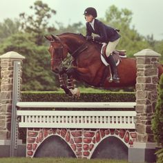 """I would like to see you begin your release a moment earlier when your horse jumps."" -Rob"