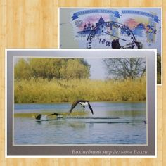 Russia (September 2015) Postcrossing official