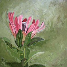 Title: Protea Compacta Medium: Oil paint on canvas Size: x Easy Art, Simple Art, Protea Art, Tea Bag Art, Painting Flowers, Watercolours, Trees To Plant, Canvas Size, Flower Art