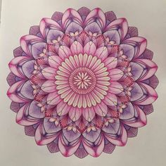 """Tropical Wonderland 