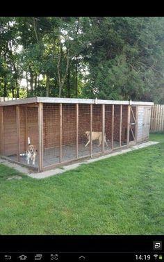 Dog kennel 6m x 1.8m