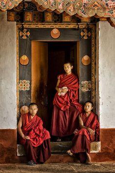 Monks in Punakha Dzong, Bhutan. Buddhist Monk, Tibetan Buddhism, Buddhist Temple, Bhutan, World Religions, World Cultures, People Around The World, Around The Worlds, Vajrayana Buddhism