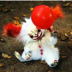 some kinda creepy clown creature! Cute Fantasy Creatures, Cute Creatures, Magical Creatures, Creepy Toys, Creepy Cute, Creepy Clown, Cute Baby Animals, Funny Animals, Creepy Stuffed Animals