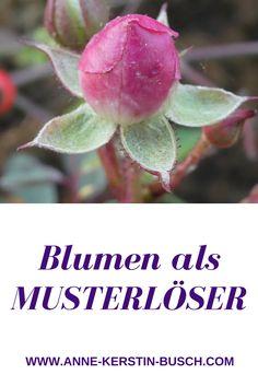 Dank Blumen, meditativer Fotografie und Schreiben alte Muster und Glaubenssätze lösen.