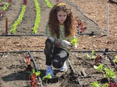 St. Andrew's student planting lettuce for our kitchens - THANK YOU!