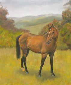 Portrait of the neighbor's horse.