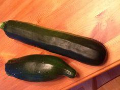 My monster zucchini!