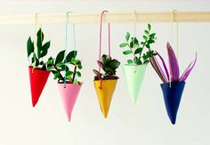 DIY Mini Hanging Garden
