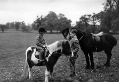 children interested in equestrian pursuits seen here attending a news ...
