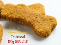 BAKE these for all the cute DOGS dressed up for HALLOWEEN! Pumpkin Peanut Butter Oatmeal Dog Biscuits from /createdbydiane/ Dog Biscuit Recipes, Dog Treat Recipes, Healthy Dog Treats, Dog Food Recipes, Oatmeal Dog Biscuit Recipe, Peanut Butter Dog Treats, Peanut Butter Oatmeal, Homemade Dog Cookies, Homemade Dog Food