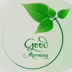 The best Good Morning images collected from all over the web that'll inspire your loved ones & uplift their mood. Good morning images, gifs, wishes, poems, wishes & more! Good Morning Wednesday, Good Morning Quotes For Him, Morning Quotes Images, Good Morning Images Hd, Morning Greetings Quotes, Good Morning Flowers, Good Morning Messages, Good Morning Good Night, Morning Pictures