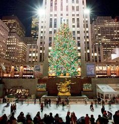 Google Image Result for http://thevacationgals.com/wp-content/uploads/2010/12/Fun-and-Free-NYC-Christmas-Activity-see-the-Rockefeller-Christmas-Tree-nycgo.com_.jpg
