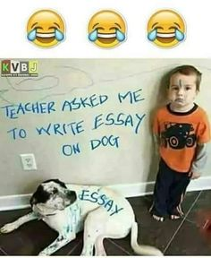 funny school jokes * funny school jokes ` funny school jokes in hindi ` funny school jokes friends ` funny school jokes student ` funny school jokes classroom ` funny school jokes teachers ` funny school jokes feelings ` funny school jokes hilarious Funny Baby Memes, Very Funny Memes, Funny Minion Memes, Cute Funny Quotes, Funny School Jokes, Some Funny Jokes, Funny Animal Memes, School Humor, Funny Relatable Memes