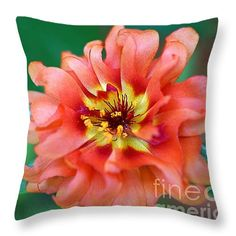 "Soft Peach Ruffled Petals 14"" x 14"" Throw Pillow by Sue Melvin.  Our throw pillows are made from 100% cotton fabric and add a stylish statement to any room.  Pillows are available in sizes from 14"" x 14"" up to 26"" x 26"".  Each pillow is printed on both sides (same image) and includes a concealed zipper and removable insert (if selected) for easy cleaning."
