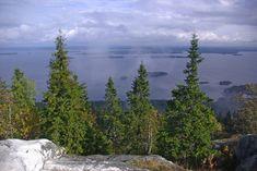 Näkymä Pieliselle Kolin kalliolta Mountains, Nature, Travel, Naturaleza, Viajes, Trips, Nature Illustration, Outdoors, Traveling