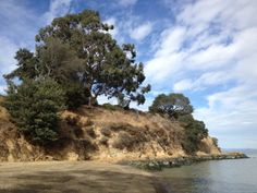 This part of Marin County offers beauty especially the park along the shore of the San Pablo Bay.