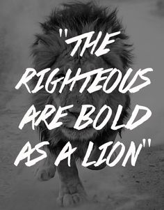 The wicked flee when no one pursues, but the righteous are bold as a lion (Proverbs 28:1, NKJV.) As a believer in Jesus Christ, you are called to live a bold, confident and overcoming life. You don't...