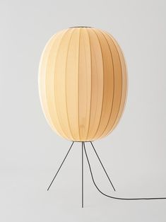 This particular unique floor lamps is truly a remarkable design concept. Garden Room Lighting, Architecture 3d, Unique Floor Lamps, Best Desk Lamp, Bright Homes, Ball Lights, Table Lamp, Flooring, Retro
