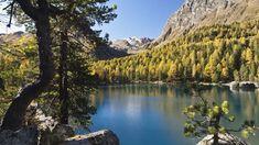 Die 14 Naturparadiese der Schweiz für einen Sommerausflug - Blick Zermatt, Wilde, Mountains, Water, Travel, Outdoor, Beautiful, Natural Wonders, Paradise