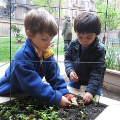 Students in our Early Childhood Learning Lab prove that anyone can have a green thumb. Did you spend time gardening this summer? #SED #homegrown