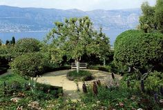 Like the round patio Lawn And Landscape, Ferrat, Los Angeles Homes, Fruit Trees, Beautiful Interiors, Garden Inspiration, Garden Ideas, Lawn And Garden, Water Features