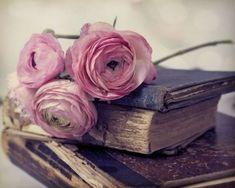 #photographie #vintage #livre #fleur