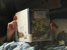#cosastoleggendooggi Il vento tra i salici  Kennet Grahame Un classico della letteratura per l'infanzia ambientato nella campagna inglese inizi novecento. I personaggi sono dei piccoli animali antropomorfizzati. Si narrano le avventure e l'amicizia che legano una piccola ingenua talpa, un topo allegro e socievole, un rospo viziato e un tasso misantropo, ma saggio. Sembra che l'autore Kenneth Grahame abbia scritto questo piccolo romanzo per il suo piccolo di sette anni, Alistair, un bambino…