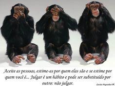 Julgar é um hábito e pode ser substituído por outro: não julgar