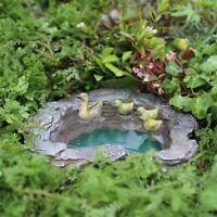 Simple Miniature Fairy Garden Kit Wood Fence Terrarium Doll House DIY Decor One Mini Fairy Garden, Fairy Garden Houses, Gnome Garden, Garden Fun, Eco Garden, Fairy House Crafts, Mini Mundo, Fairy Garden Furniture, Water Features In The Garden