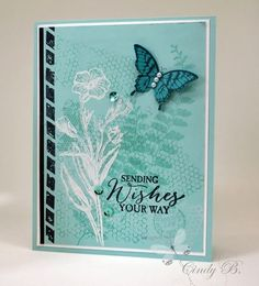 Colors: black, bermuda bay, coastal cabana, pool party, whisper white | Stamps: butterfly basics, papillon potpourri