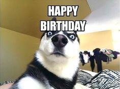 23 Funniest Happy Birthday Memes For Him Funny Happy Birthday Meme Happy Birthday Google Happy Birthday Boy