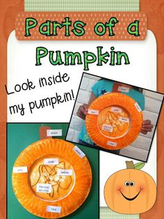 What a cute way to label the outside and inside of a pumpkin!