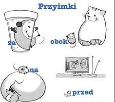 Learn Polish, Teacher Morale, Polish Words, Polish Language, Gernal Knowledge, How To Pronounce, Kids Education, Poland, Vocabulary