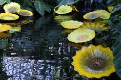 Dale Chihuly works at Garfield Park in Chicago 2009