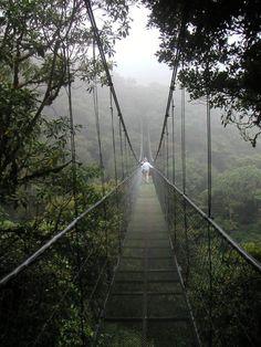 Cloud Bridge in Chirripo National Park, Costa Rica