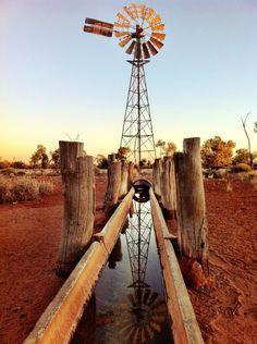 An iconic scene of windmill and stock trough in Outback Queensland ...supplying life-giving water to sheep and cattle in a harsh, dry environment.