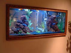 Beautiful In Wall Aquarium Designs. 50 aquarium designs that will generate aquarium ideas for your own aquarium table aquarium wall or aquarium decorations. Aquarium Design, Big Aquarium, Cichlid Aquarium, Home Aquarium, Saltwater Aquarium, Aquarium Fish Tank, Aquarium Ideas, Aquarium Stand, Saltwater Tank