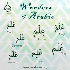 Discover some wonders in Arabic language