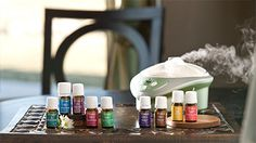 WANT TO BOOST YOUR REVENUE NO MATTER YOUR BUSINESS?!?!?!? Did you know that the pleasant scent of essential oils could boost your business by 20% or more?    It's time to capitalize on the benefits of Young Living essential oils TODAY!!!!!  http://articles.chicagotribune.com/2012-12-14/classified/sc-cons-1213-umberger-homebuying-20121214_1_chocolate-chip-green-tea-scent