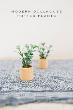 DIY Modern Dollhouse Potted Plants – Alice Wingerden