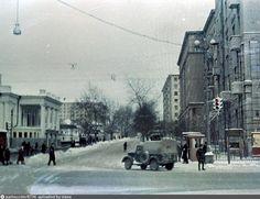 Ленинградский проспект. Прошлое и настоящее. Часть 26.: stapelia2784