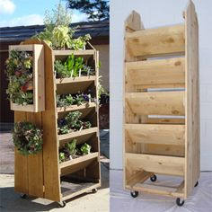 DIY movable vertical garden (move it to where the best sun is, or out of heavy rain and frost)