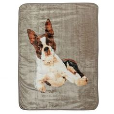 Deka French Bulldog 150x200cm     #deka#obyvacka#prikryvka#detskaizba French Bulldog, Laundry, Bags, Home Decor, Laundry Room, Handbags, Decoration Home, Room Decor, French Bulldog Shedding