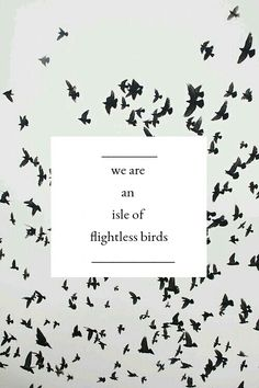 Isle of Flightless Birds // Twenty One Pilots // we find our worth in giving birth and stuff