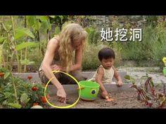 Little Pim Mandarin for Kids 5 - Counting Seeds - YouTube